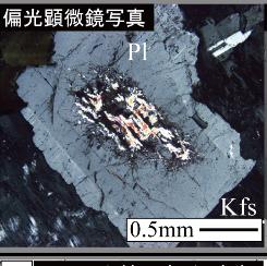 【特集】科研費取得教員の声-結晶質岩のマトリクス拡散に関する物質移動モデルの構築:鉱物中の微小孔への注目-(研究代表者:湯口貴史 准教授)